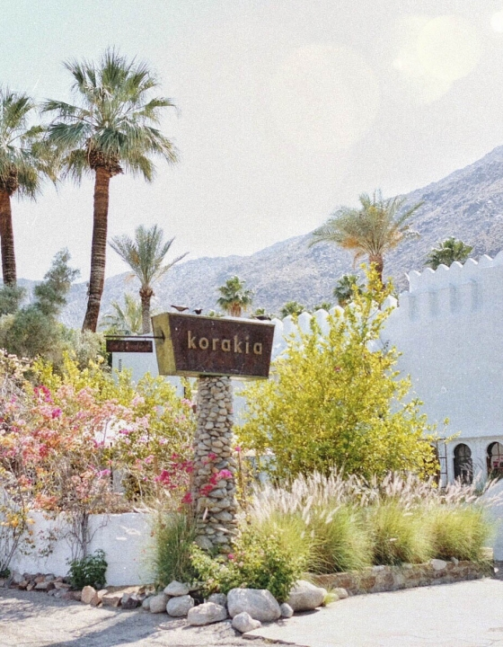 10 Photogenic Hotels in Greater Palm Springs Worth Checking Out